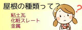 http://team-t.sakura.ne.jp/yanek/wp/roof/